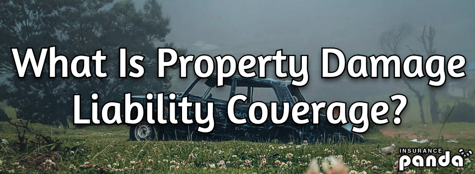 property damage liability pdl