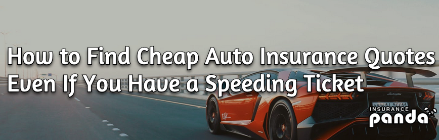 How to Find Cheap Auto Insurance Quotes Even If You Have a Speeding Ticket