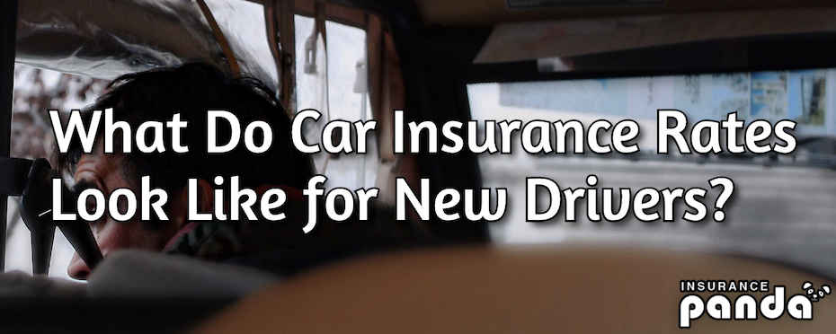 What Do Car Insurance Rates Look Like for New Drivers?