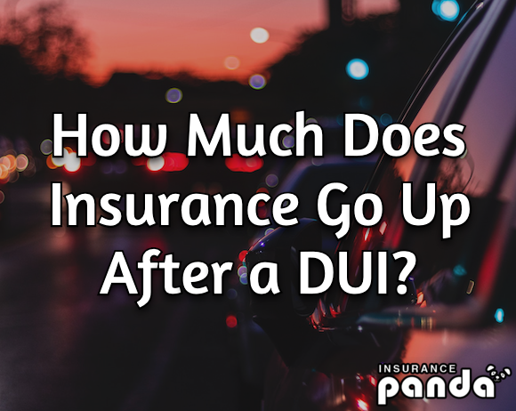 how much does a dui raise your insurance