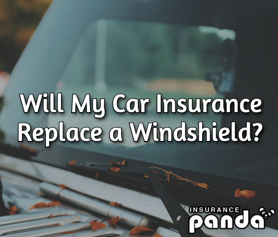 will car insurance replace a windshield