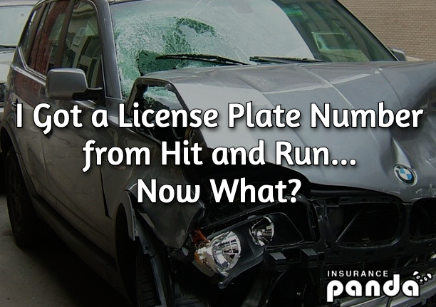 hit and run license plate number