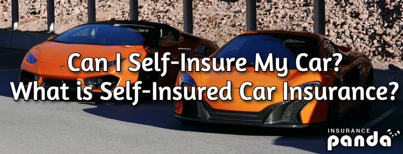 self insured car insurance