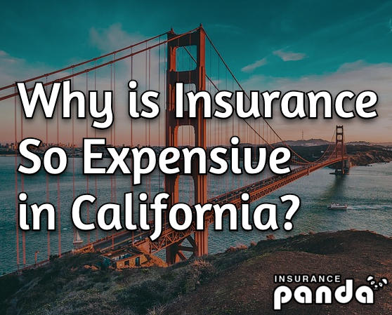 Why is Car Insurance So Expensive in California?