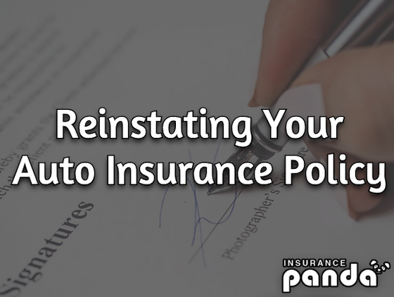 Reinstate Your Auto Insurance Policy
