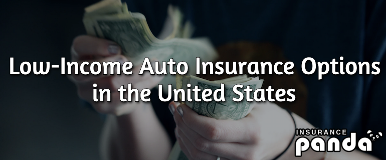 Low-Income Auto Insurance Options in the US
