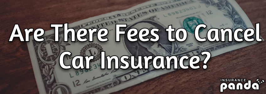 Are There Fees to Cancel Car Insurance?