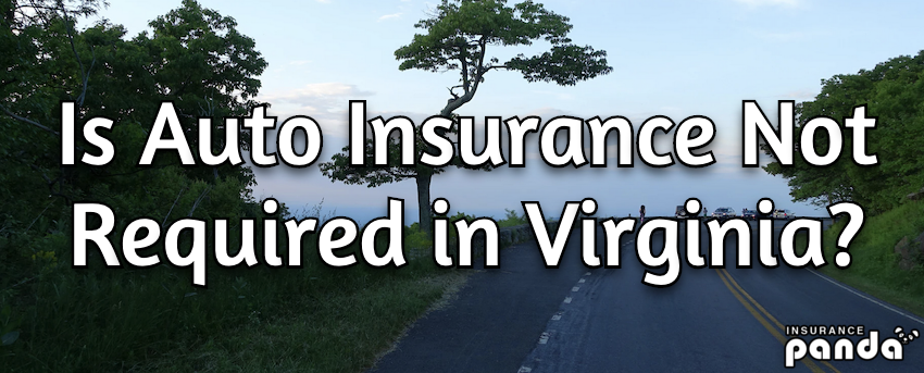 Is Auto Insurance Not Required in Virginia?