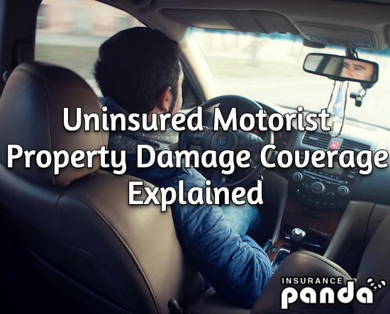 Uninsured Motorist Property Damage Coverage