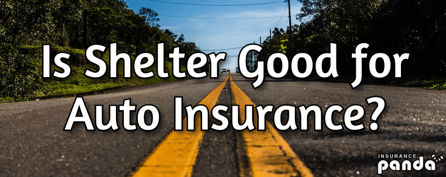 Is Shelter Good for Auto Insurance?