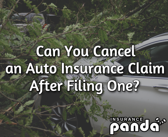 Can You Cancel an Auto Insurance Claim After Filing One?