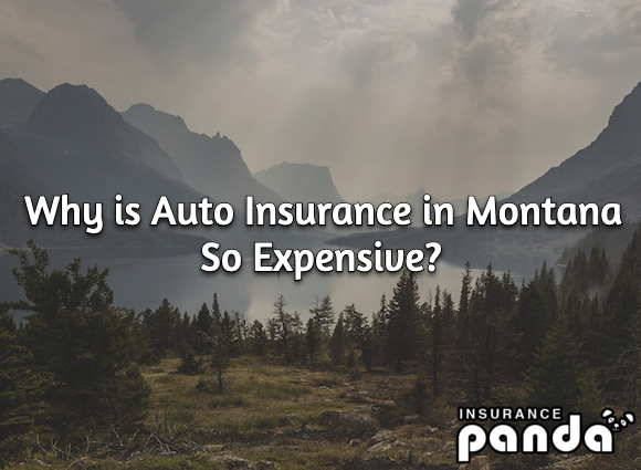 Why is Auto Insurance in Montana So Expensive?