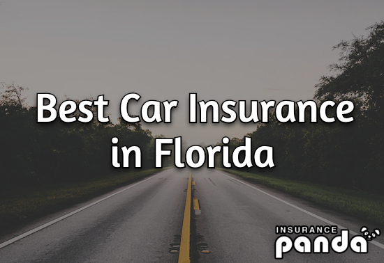 Best Car Insurance in Florida