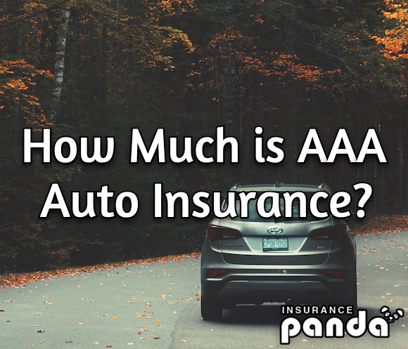How Much is AAA Auto Insurance?