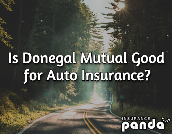 Is Donegal Mutual Good for Auto Insurance?