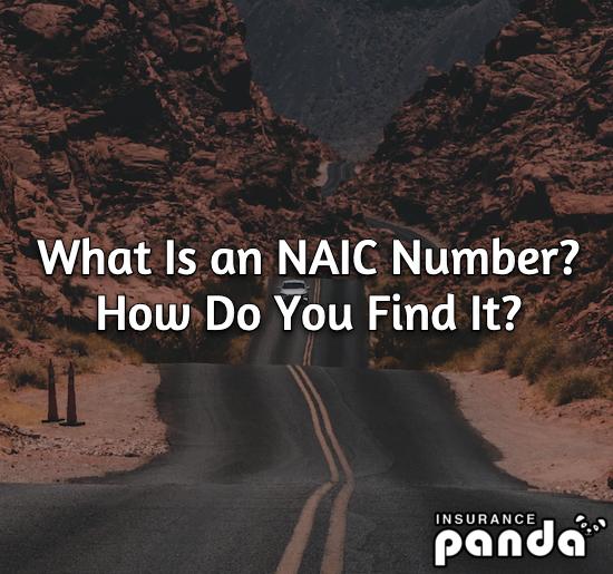 NAIC numbers