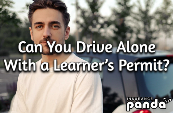 Can You Drive Alone With a Learner's Permit?
