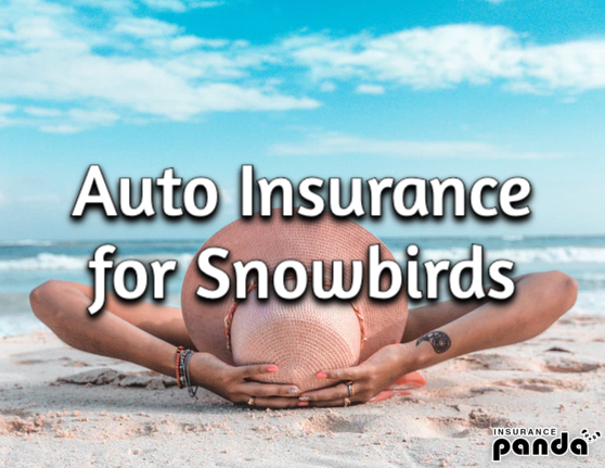 auto insurance for snowbirds
